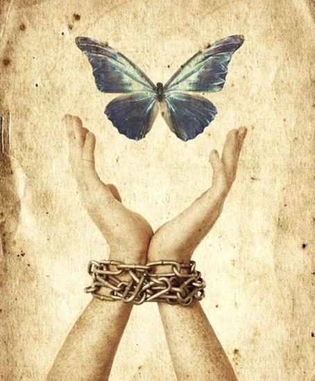 farfalla_catene
